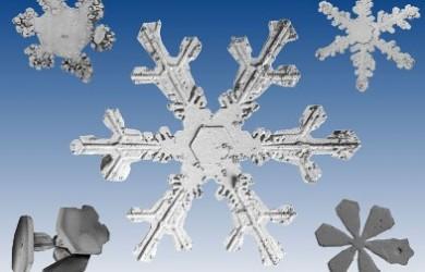 SnowFlakes, Cornflakes